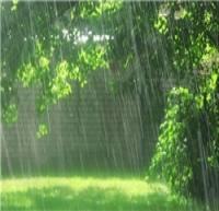 ۱۶ استان کشور همچنان بینصیب از باران/ کاهش ۱۰۰ درصدی بارش در ۸ استان