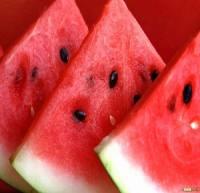 صادرات هندوانه به ضرر بخش کشاورزی است؟