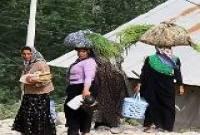 8 زن مانع عبور کامیون از داخل روستا شدند