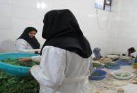 افتتاح طرح های اقتصاد مقاومتی در میاندورود