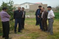 خوشحالی و ابراز تشکر کشاورزان سورکی برای حل مشکل چندین ساله آنها توسط شهرداری
