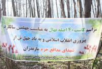 کاشت چهل اصله نهال به نام چهل شهید مدافع حرم مازندران در میاندورود