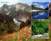 تصاويري از طبيعت