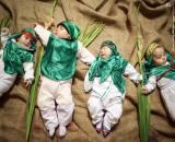 عکس/ شیرخوارگان حسینی در حرم حضرت معصومه (س)
